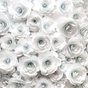 پوستر دیواری طرح رز سفید 2