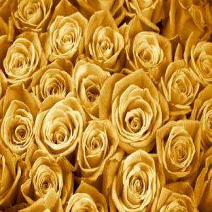 پوستر سه بعدی طرح رز طلایی