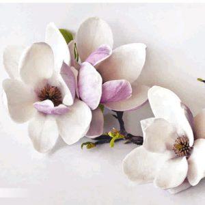 پوستر-دیواری-طرح-گل سفید
